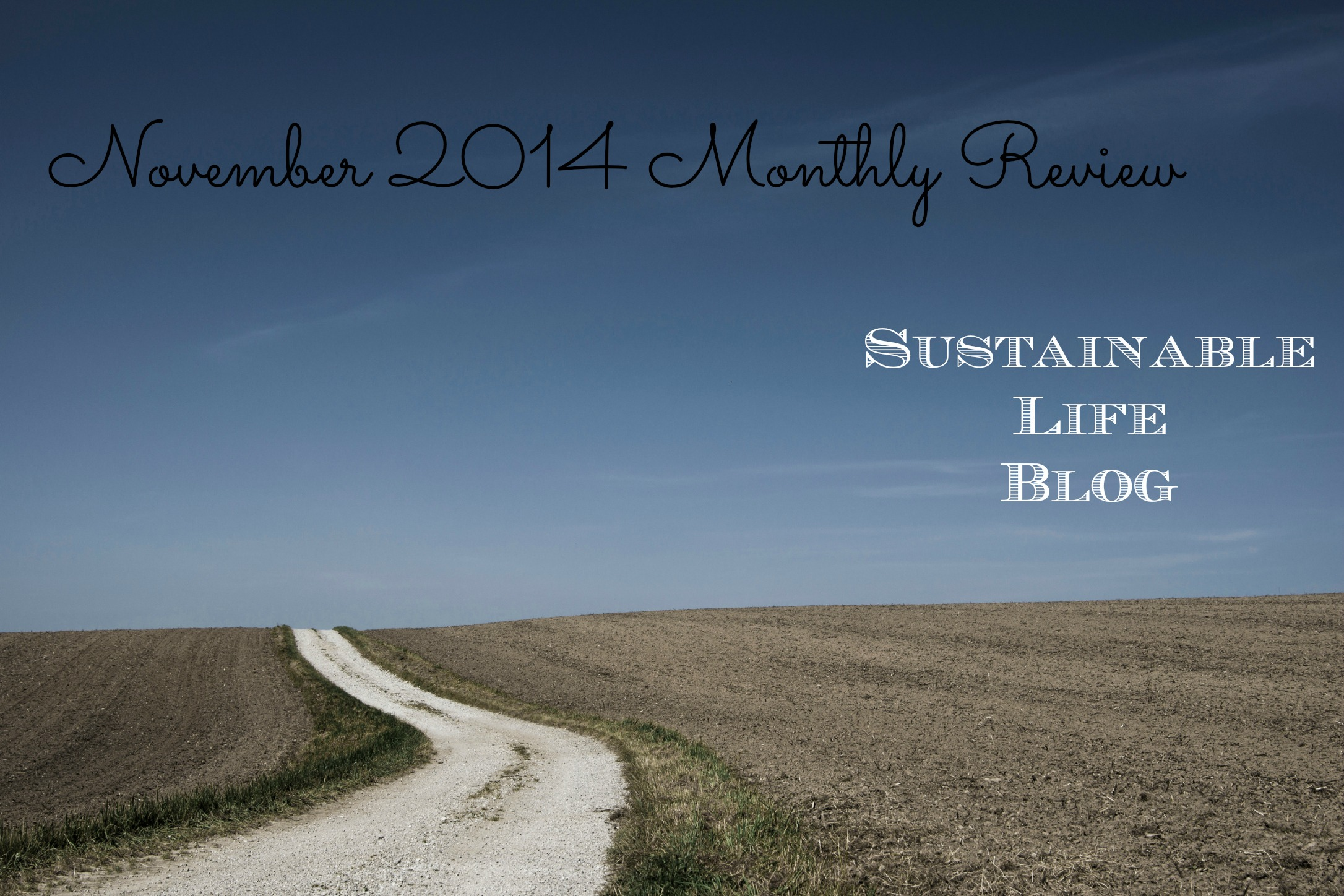 November 2014 Monthly Review